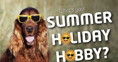 Which summer hobby should you try?